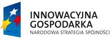 innowacyjna_gospodarka (18.60KB, PNG)