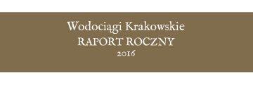 Raport Roczny 2016